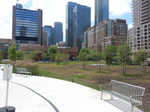 11 Wellesley park setting.jpg