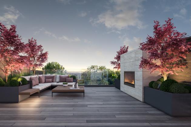 rooftopWEB.jpg