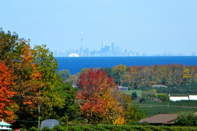 On A Clear Day You Can See Toronto From Beamsville
