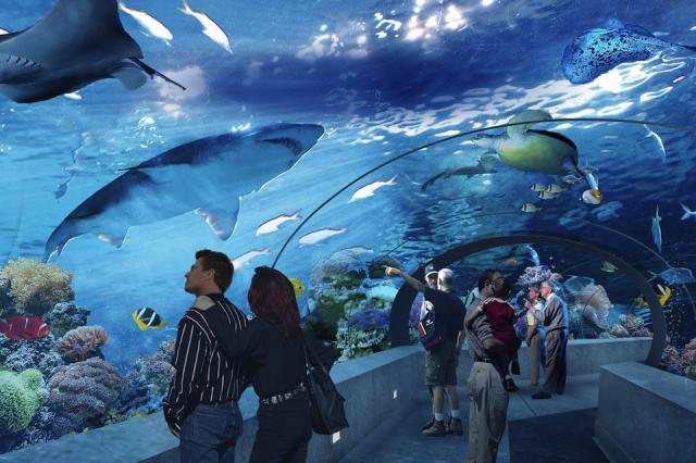 Ripley's Aquarium of Canada, image courtesy of Ripley's Entertainment