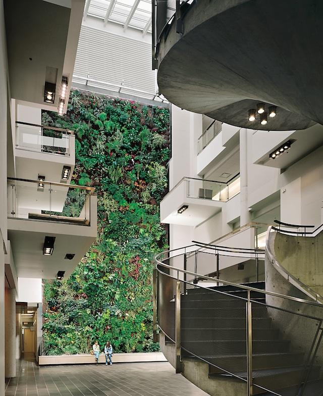 Living Wall at University Of Guelph Humber, Etobicoke, Diamond Schmitt