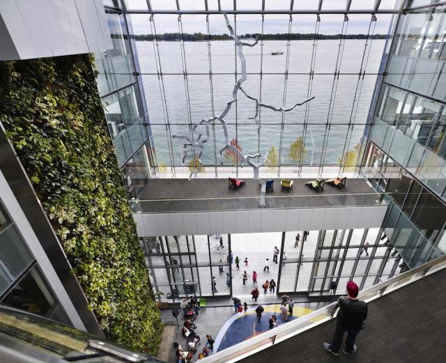 Living Wall at Corus Quay, Toronto, Dianmond Schmitt, image by Richard Johnson