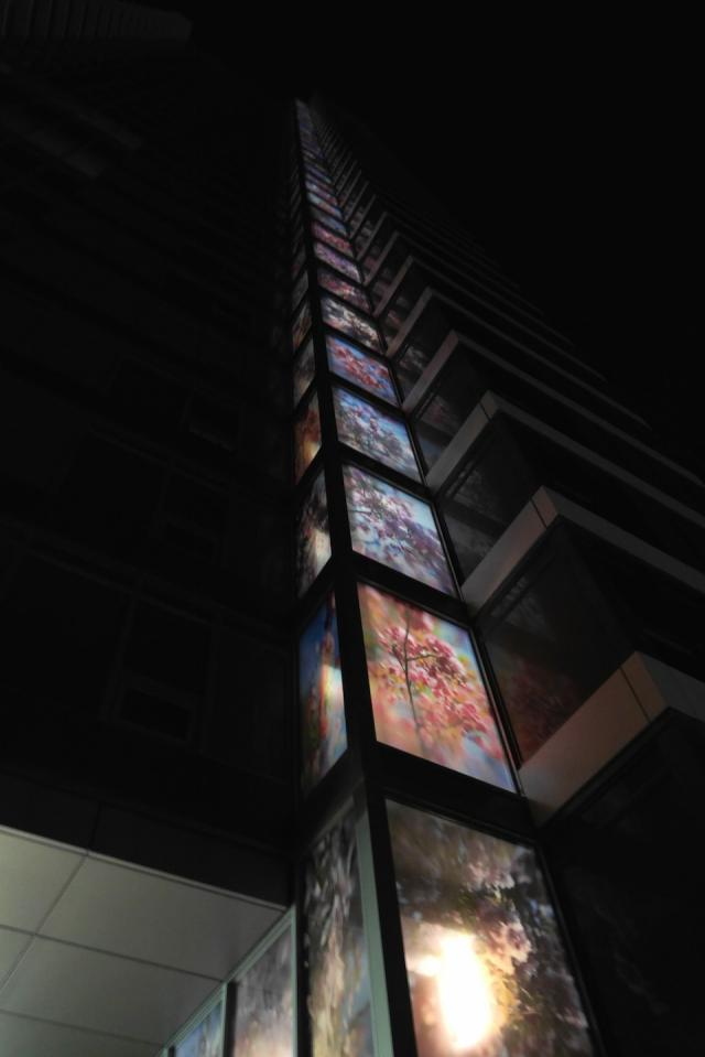 'Spring' glows by night on the faces of Tango at Concord Park Place, Toronto