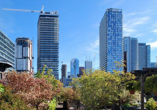 Toronto's development boom evident in the downtown core, image by Marcus Mitanis