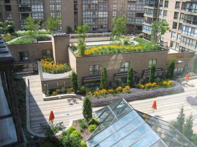 Toronto Incentivizing Eco Roof Conversions Urban Toronto