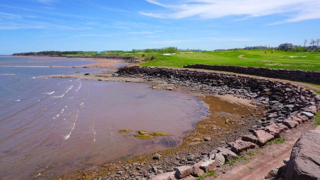 Fairways beside the Northumberland Strait, Fox Harb'r, NS, image by Craig White