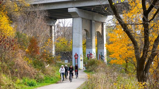 ULI Bike Ride, North of the Dundas Bridge in Lambton Park, image by Craig White