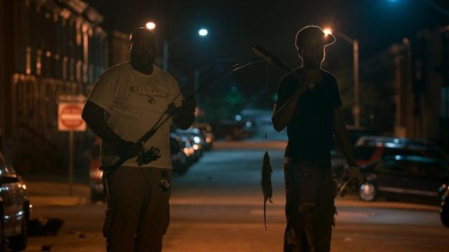 Rats are indicators of larger social issues in Baltimore, in Rat Film, image cou
