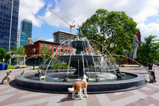 The fountain by Claude Cormier at Berczy Park, Toronto, image by Craig White