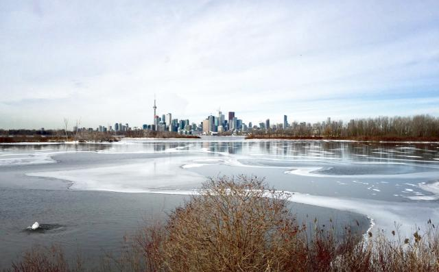 Photo of the Day, Toronto, skyline, Leslie Street Spit
