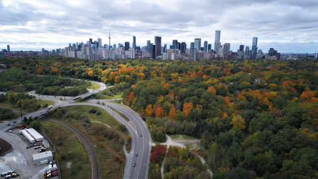 Photo of the Day, Toronto, skyline, fall colours, autumn