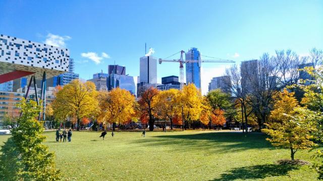 Photo of the Day, Toronto skyline, Grange Park, OCAD U