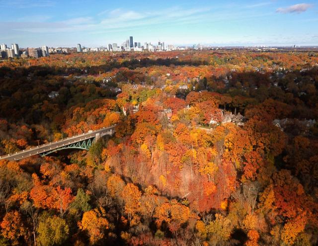 Photo of the Day, Toronto, skyline, Midtown, Yonge, Eglinton